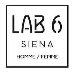 lab6.jpeg